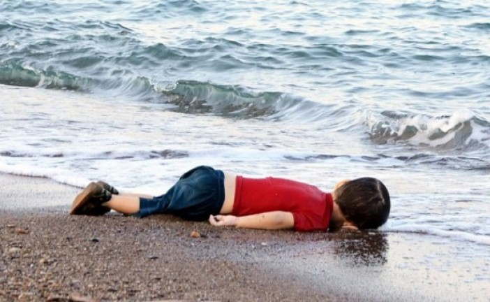 Témoignage de la photographe de l'enfant syrien noyé: «quand je l'ai vu, je suis restée figée, glacée.»