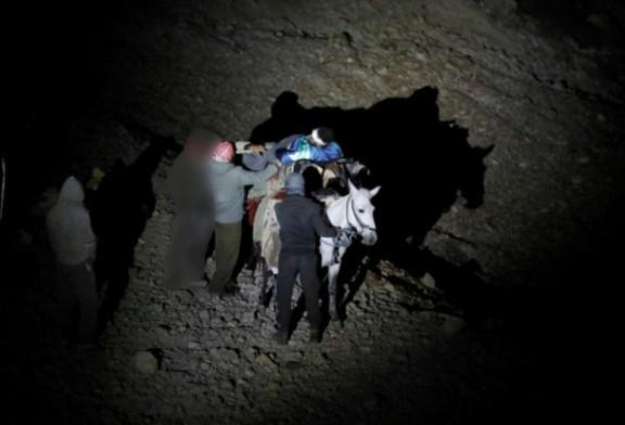 Arrivés à dos d'ânes, des blessés syriens s'en remettent à Israël