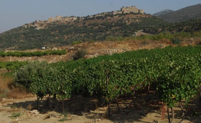 Du pétrole sur les hauteurs du Golan ?