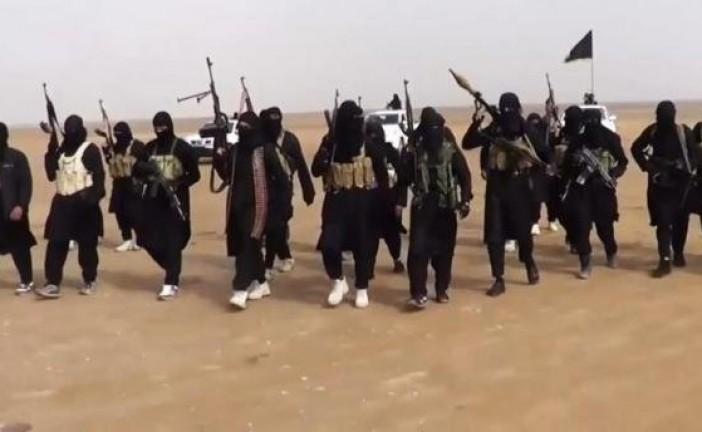 «Le nombre de combattant de l'EI a baissé de 20 %» selon un rapport américain.
