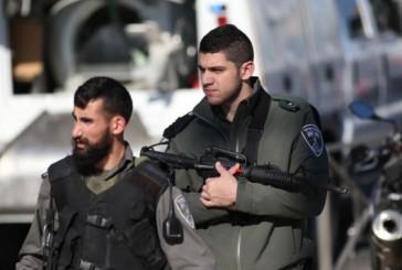 Nouvelle agression au couteau d'une terroriste palestinienne de 16 ans.