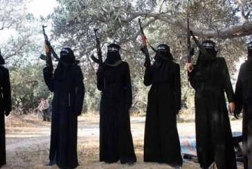 Un document top-secret sur les djihadistes belges, fuite dans la presse